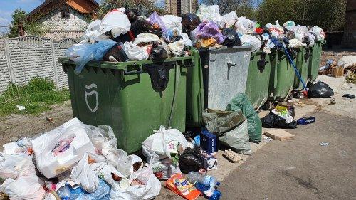 Когда во Львове вывозят органические и пластиковые отходы: график