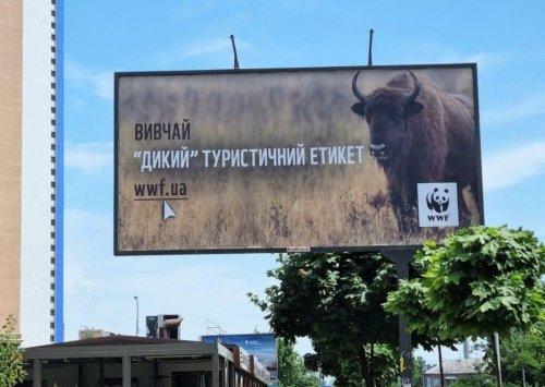 """Украинцам оригинальным способом рассказали о """"диком"""" туристическом этикете в Карпатах. Фото"""