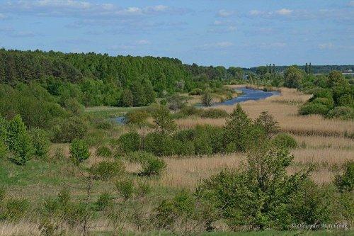 Люди захватили 302 участка природно-заповедного фонда в Винницкой области