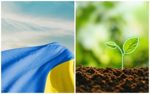 Экологический патриотизм по-украински: зачем нам амбициозный НВВ2?