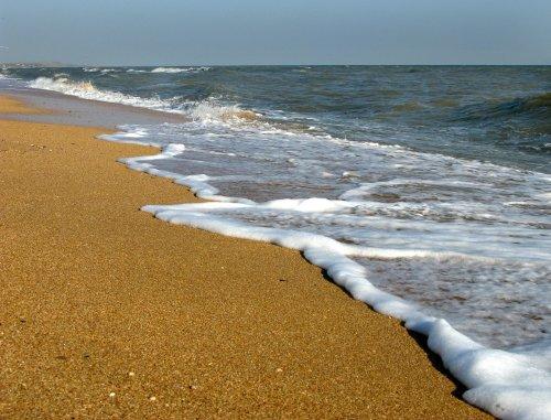 В Кирилівці минуло нашестя медуз: відпочивальники знову купаються в морі. Відео