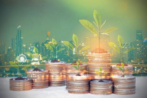 Экокомитету передали на рассмотрение законопроект об экологическом страховании: что он предусматривает