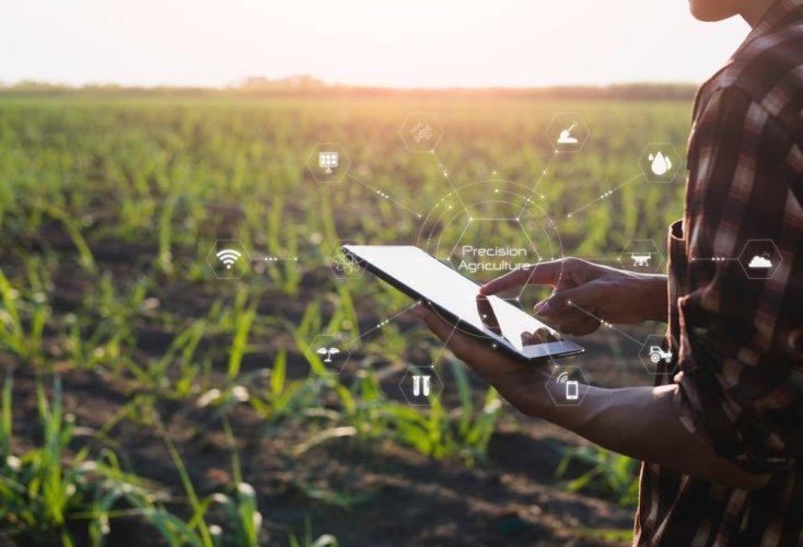 Україна має представити на Саміті ООН свій внесок у глобальні продовольчі системи, — Качка