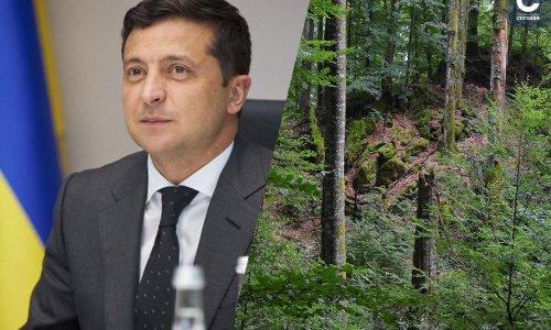 Израильский фонд поможет реализовать план Зеленского по высадке 1 млрд деревьев