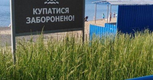У більшості пляжів Одещини та Києва заборонено купатися, — голова Держекоінспекції