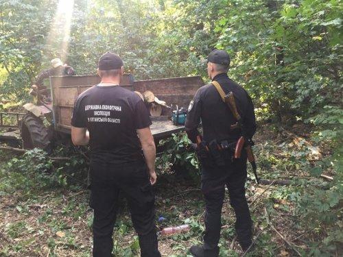 На Луганщине поймали браконьеров, которые незаконно рубили деревья