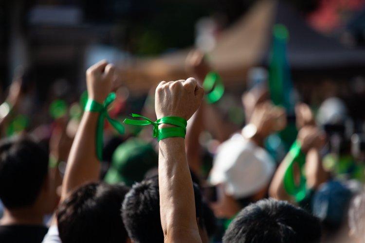 В Чернигове экоактивисты приняли экологический манифест после нападения на одного из них