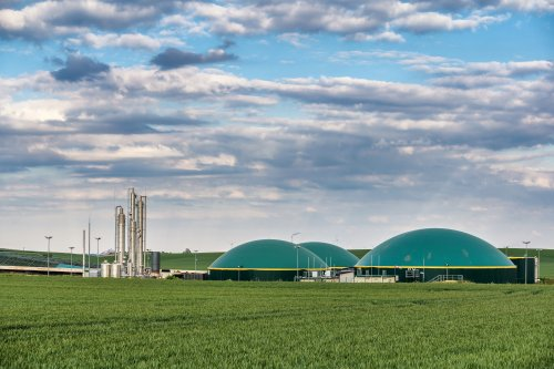 Біометан може замінити чверть споживання природного газу в Україні – експерт