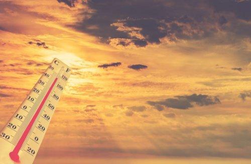 Лето в Украине станет еще жарче: климатолог шокировала прогнозом