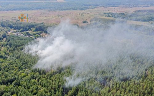 На Харківщині вирують пожежі в екосистемах: названо причину