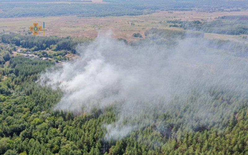 На Харьковщине бушуют пожары в экосистемах: названа причина