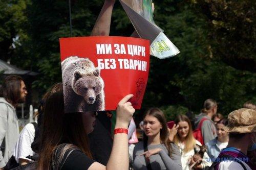 У 30 містах України пройшов марш за тварин. Фото та відео
