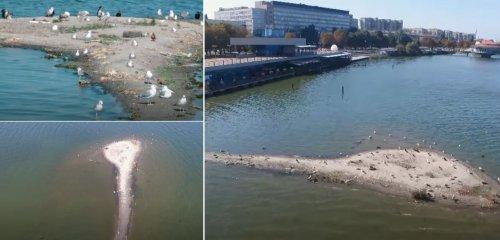 В Днепре посреди реки возник «островок»: экологи предупредили о его опасности