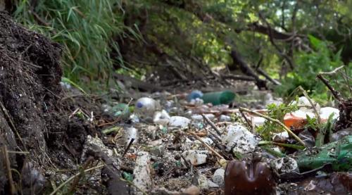 З'явився соціальний ролик про те, як активісти розчистили річку на Харківщині