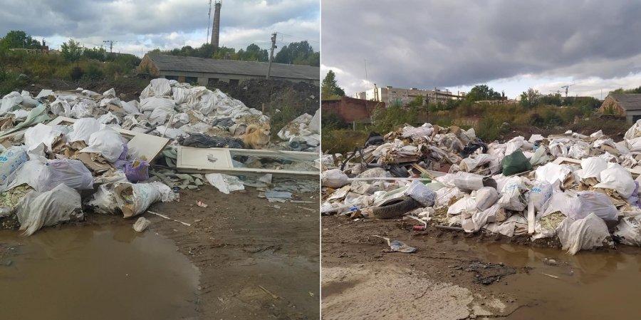 В окрестностях Львова образовались стихийные свалки. Фото и видео