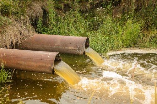 Рівненські комунальники скидали в озеро нечистоти