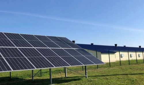 На волинській птахофермі встановили сонячну електростанцію. Відео