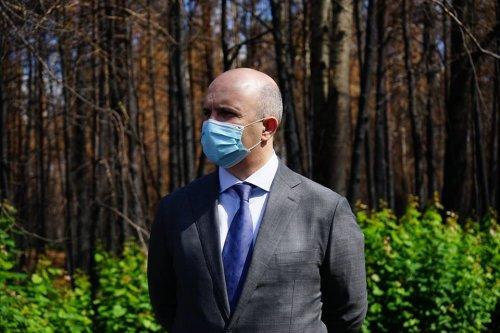Державну стратегію управління лісами України розгляне уряд