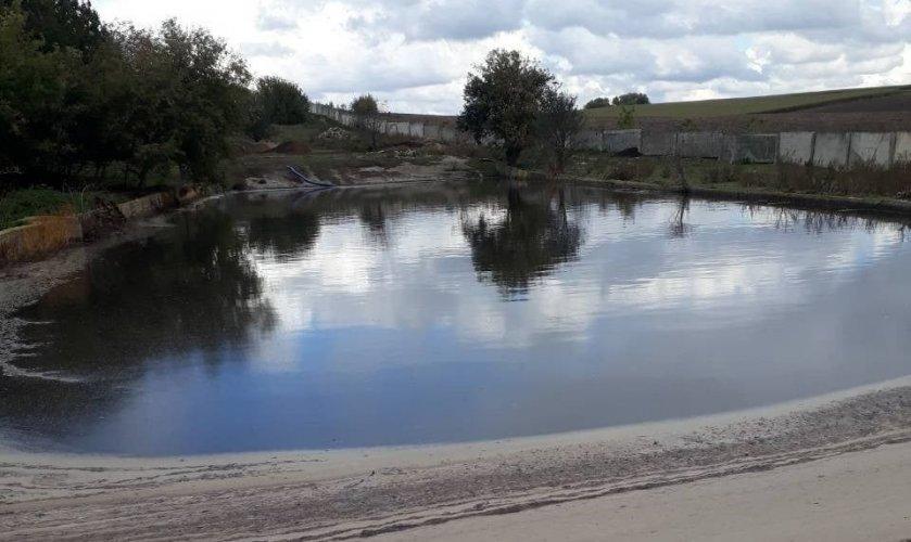 Свиноферма на Хмельниччині забруднювала річку стічними водами із сечею
