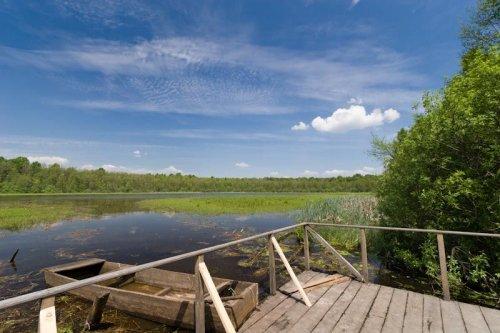 Легендарное озеро на Волыни превращается в болото. Видео