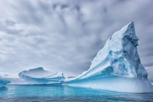 В экосистеме Антарктики обнаружили опасные соединения
