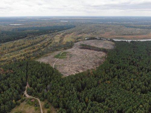 Довкіллю Чернігівщини завдано збитків майже в 40 млн грн. Фото