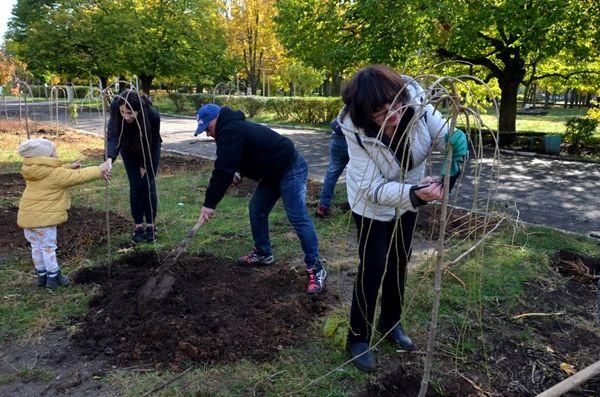 В Николаеве появилась новая аллея, на которой высадили сотню декоративных деревьев. Фото