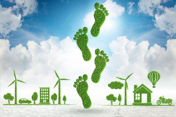В Украине создадут приложение для отслеживания углеродного следа