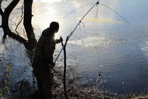 Браконьєри на Донеччині порибалили на 5,5 млн гривень